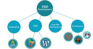 PHP Development For Interactive