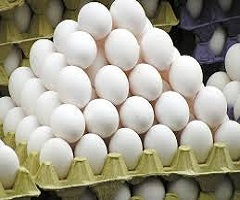 Egg Packaging Consumption Market