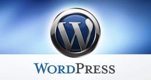 Importance of Wordpress