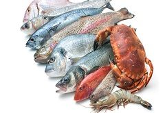 Fresh Seafoods