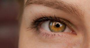 Retinal Imaging for Detection of Alzheimer's