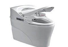 Asia-Pacific Integrated Smart Toilet