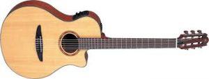 Acoustic Guitar Market