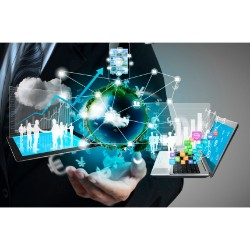 Managed Mobility Services(MMS) Market