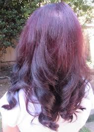 Permanent Hair Dye Market