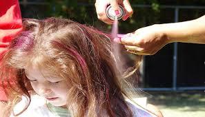 Spray Type Hair Dye Market