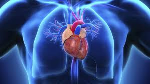 Hypertrophic Cardiomyopathy Therapeutics Market