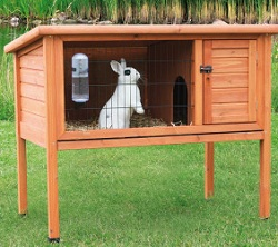 Rabbit Hutch Market