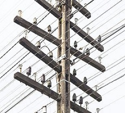 Telegraph Poles Market