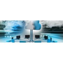 Cloud Based Simulation Application Market
