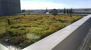 Green-Roof Market