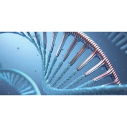 Oligonucleotide Therapeutics Market