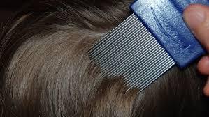 Head Lice Infestation Drug Market