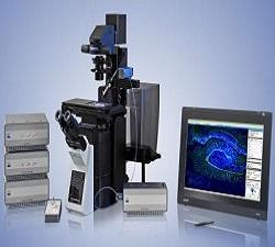 Laser Capture Microdissection Market