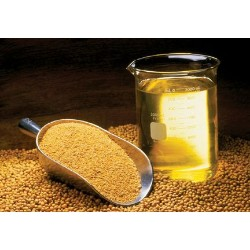 Epoxidized Soybean Oil Market