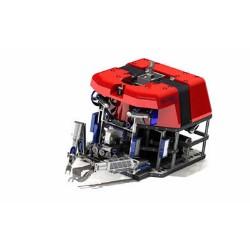 Work Class ROVs Market